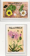 1973 - MAROCCO - MAROC - Yv:  Nr. 687+681 - NH - (UP121.2) - Marocco (1956-...)