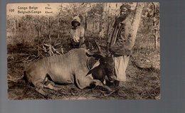 Congo -  Entier Stibbe EP 61 VUE 105 - MARQUES NOIRES - NEUF -  PL5 - Ganzsachen