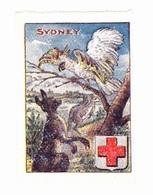 Vignette Militaire Delandre - Croix Rouge - Sydney - Commemorative Labels