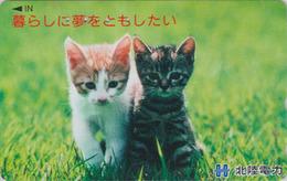 Télécarte Japon / 110-016 - ANIMAL - CHAT Chats - CAT Japan Phonecard - KATZE - GATTO - 4948 - Chats