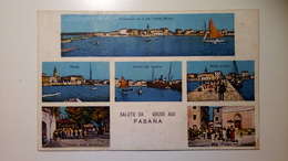 Croatia, Istria - Brijuni - Isole Brioni (Ex Provincie) - Saluto Da Fasana, Gruss Aus Fazana - Jugoslavia