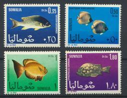 °°° SOMALIA - Y&T N°76/79 - 1967 MNH - Somalia (1960-...)