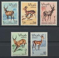 °°° SOMALIA - Y&T N°91/95 - 1968 MNH - Somalia (1960-...)