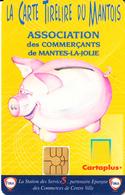 FRANCE - La Carte Tirelire Du Mantois, Used - Autres Collections