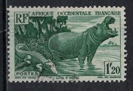 A O F      N°  YVERT    31        OBLITERE       ( O   1/ 50 ) - A.O.F. (1934-1959)