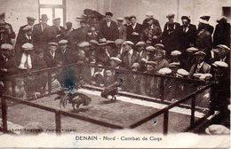 Denain : Combat De Coqs - Denain
