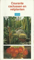 COURANTE CATUSSEN EN VETPLANTEN - Uitgave CERA - LANNOO 1994 - Sachbücher