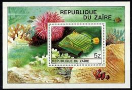 Zaire HB 23 En Nuevo - Zaire