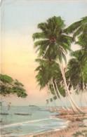 CPA  Panama Majestic Palms Rising Aloft From The Water's Edge  E411 - Panama