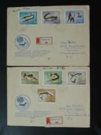 Lettre Recommandée Registered Cover (x2) Poissons Fish Peche Sportive Sport Fishing Hongrie Hungary 1967 - Fische