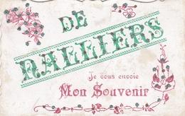 ¤¤  -  NALLIERS   -  Carte Fantaisie à Paillettes   - De .......  Je Vous Envoie Mon Souvenir    -  ¤¤ - France