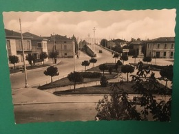 Cartolina Faenza - Piazza Sercomani - 1950 Ca. - Ravenna