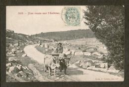 CP-Une Route Sur L'AUBRAC - France