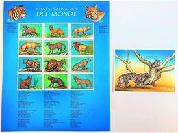 # Congo 2000**Mi.1438-50 Cat Species From All Over The World  , MNH [26;19] - Briefmarken