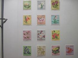 Belgian Congo1952 Flora Flowers MVLH - Orchids
