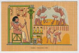 THEBES   THRASHING  CORN          (VIAGGIATA) - Egitto