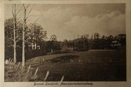 Bussum // Landzicht - - Amersfoortschestraatweg 1924 - Bussum