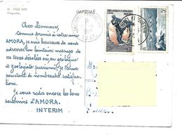 Terres AUSTRALES Et ANTARCTIQUES FRANCAISES*Pingouins-PUB.Collection AMORA-TIMBRE-Obliteration-1959 - TAAF : Territori Francesi Meridionali