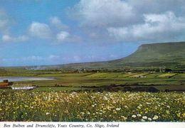 1 AK Irland Ireland * Ben Bulben And Drumcliffe -  Ein 527 Meter Hoher Tafelberg Im County Sligo * - Sligo