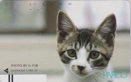 Télécarte Ancienne Japon / 110-17498 - ANIMAL - CHAT ** PARCO ** - CAT Japan Front Bar Phonecard / A - KATZE - 4959 - Chats