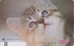 Télécarte Ancienne Japon / 110-17499 - ANIMAL - CHAT ** PARCO ** - CAT Japan Front Bar Phonecard / A - KATZE - 4961 - Chats