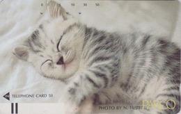 Télécarte Ancienne Japon / 110-21827 - ANIMAL - CHAT ** PARCO ** - CAT Japan Front Bar Phonecard / B - 4965 - Chats