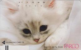 Télécarte Ancienne Japon / 110-21828 - ANIMAL - CHAT ** PARCO ** - CAT Japan Front Bar Phonecard / B - KATZE - 4968 - Chats