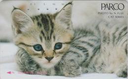 Télécarte Japon / 110-37087 - ANIMAL - CHAT ** PARCO ** - CAT Japan Phonecard - V1 KATZE - 4969 - Chats