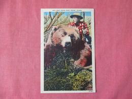 Large Kodiak Bear Kodiak Alaska Man With Shotgun   Ref 3155 - Bears