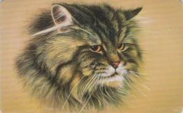 Télécarte Puce Russie - ANIMAL - CHAT  - CAT Russia Chip Phonecard - KATZE - 4979 - Gatos