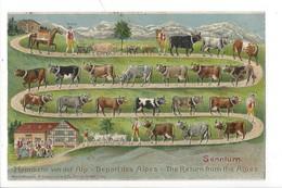 21426 -  Senntum Départ Des Alpes The Return From The Alpes Zinal Carte Taxée - Altri