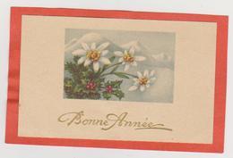 839 - MIGNONETTE BONNE ANNEE . EDELWEIS HOUE MONTAGNE ENNEIGEE - Neujahr