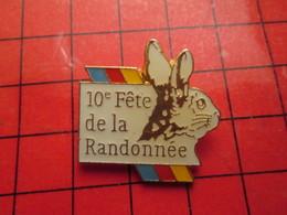 1518b Pin's Pins / Beau Et Rare : THEME : ANIMAUX / LAPIN LIEVRE GARENNE 10e FETE DE LA RANDONNEE - Animaux