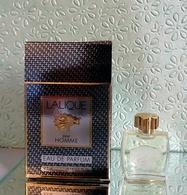 """Miniature De Parfum """"LALIQUE""""  Pour HOMME Eau De Parfum 4,5 Ml Avec Sa Boîte - Miniatures Hommes (avec Boite)"""