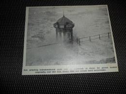 """Origineel Knipsel ( 2150 ) Uit Tijdschrift """" Ons Volk """"  1936  :   Heyst  Heist - Oude Documenten"""