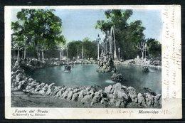 CARTOLINA CV2359 URUGUAY Montevideo Fuente Del Prado, 1906, Viaggiata Per L'Italia, Formato Piccolo, Ottime Condizioni - Uruguay