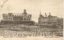 DE HAAN - Coq-sur-Mer - Le Grand Hôtel Et L'environnement - Petite Animation - Edit.La Lecture Balnéaire - 1905 - De Haan