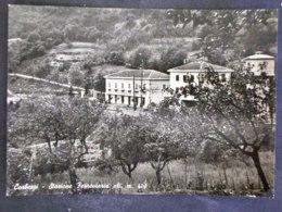 TOSCANA -PISTOIA -CORBEZZI -F.G. LOTTO N°251 - Pistoia