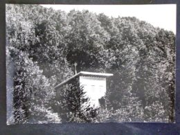 TOSCANA -PISTOIA -MARESCA -F.G. LOTTO N°251 - Pistoia