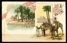 CARTOLINA CV2384 EGITTO EGYPT Piramidi E Datteri, Tipo Gruss Aus, 1901, Viaggiata Per L'Italia, Formato Piccolo, Francob - Piramidi
