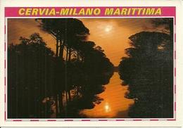 Cervia Milano Marittima (Ravenna) Pineta Tramonto, Pine-Wood Sunset, Pinede Coucher Du Soleil - Ravenna