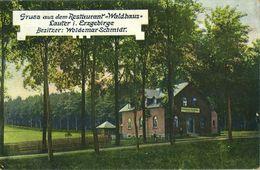 LAUTER I. Erzgebirge, Restaurant Waldhaus, Besitzer Woldemar Schmidt (1913) AK - Bernsbach