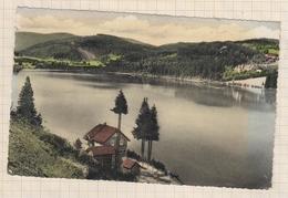9AL225 Titisee Im Südl. Hochschwarzwald   2 SCANS - Titisee-Neustadt