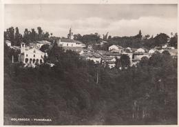 248 - Golasecca - Italia