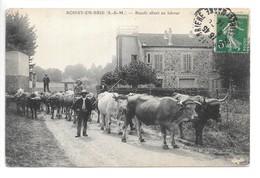 Cpa...Roissy-en-Brie....(S.-et-M.)...boeufs Allant Au Labour...animée...troupeau...1914.. - Roissy En Brie