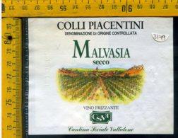 Etichetta Vino Liquore Malvasia Secco 1992 C. Piacentini Valtidone - Altri