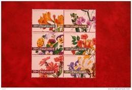 Zomerzegels; NVPH 2164-2169 (Mi 2098-2103); 2003 POSTFRIS / MNH ** NEDERLAND / NIEDERLANDE / NETHERLANDS - 1980-... (Beatrix)