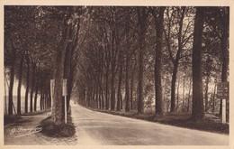 TRILPORT - Route De Meaux - Francia