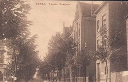 Ukkel Uccle Avenue Montjoie - Ukkel - Uccle