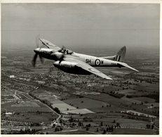 De Havilland DH  HORNET     25 * 20  Cm - Aviación